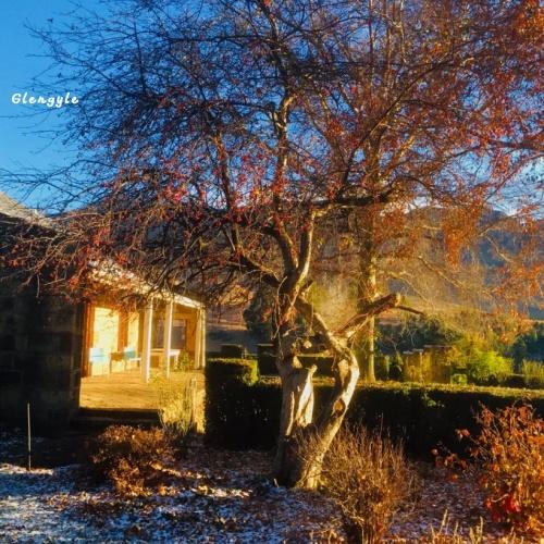 Glengyle - house4