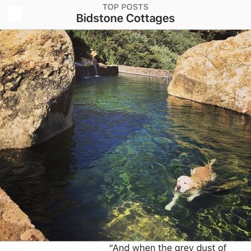 Instagram - Bidstone2