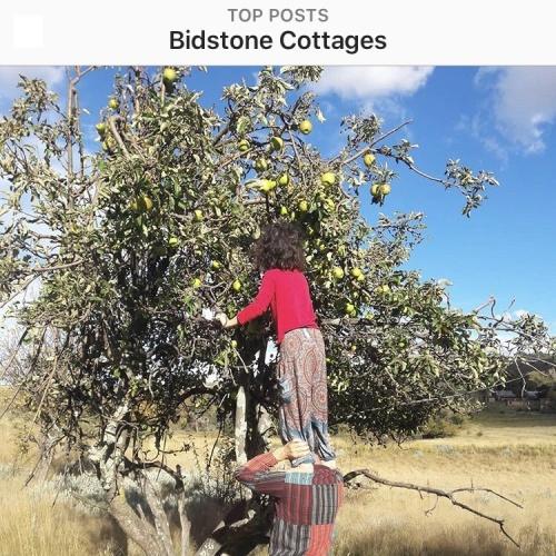 Instagram - Bidstone7