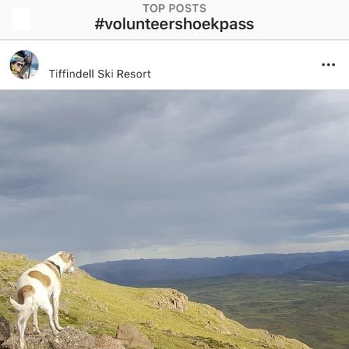 Instagram - Passes15