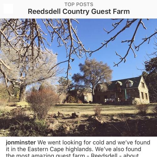 Instagram - Reedsdell6