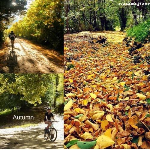 Rideaway - Autumn
