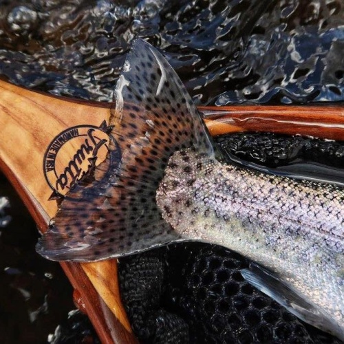 Trout5 - Peter Brigg