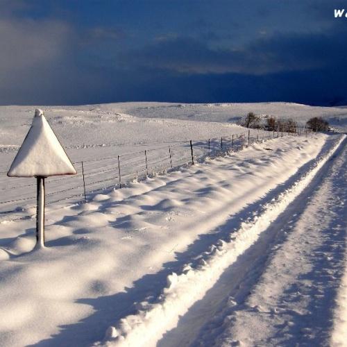 Wartrail - winter3