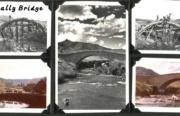 Faskally - Bridge1