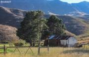 Reedsdell - Honeymoon Cottage