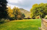 Reedsdell - Garden2