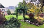Reedsdell - Garden3