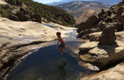 Reedsdell - Pool