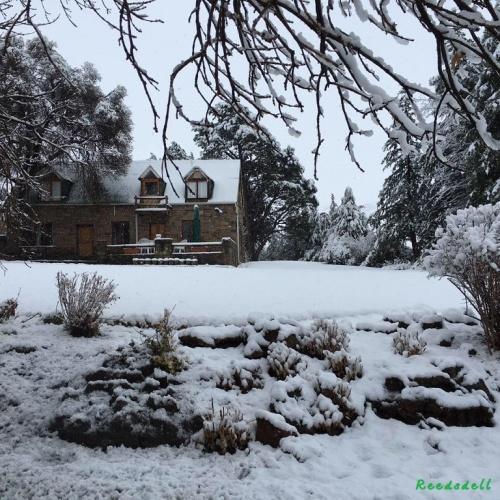 Reedsdell - snow1